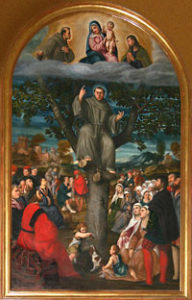 St. Anthony of Padua tree